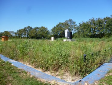 Roseaulix, l'épuration écologique - Photo n°1